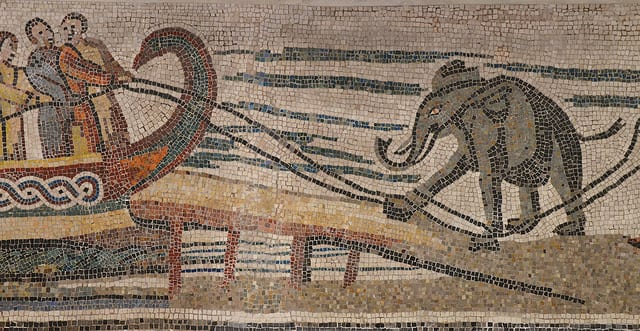 Part of a Roman mosaic found in Italy dating back to the 3rd or 4th century. An African elephant is being loaded on to a ship, presumably from Africa to Europe.